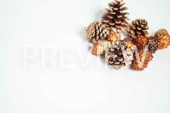 Stock Photo: Fall Acorns & Pinecones #2 -Personal & Commer