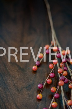 Stock Photo: Fall Berries #4 -Personal & Commercial Use