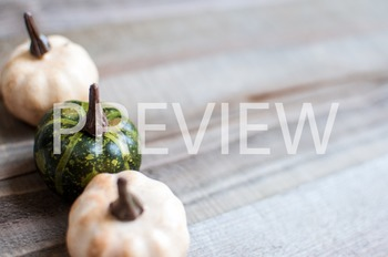 Stock Photo Styled Image: Colored Pumpkins on Wood #3 -Per