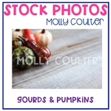 Stock Photo: Fall Gourds & Pumpkins -Personal & Commercial Use