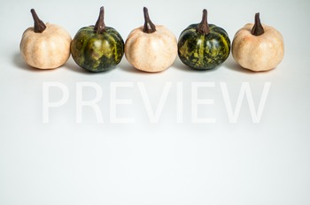 Stock Photo: Fall Colored Pumpkins -Personal & Commercial Use