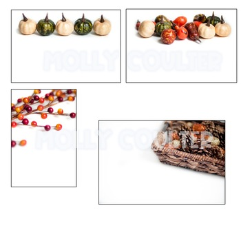 Stock Photo: Fall Set-Personal & Commercial Use