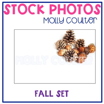 Stock Photo: Fall Set of Acorns & Pinecones #1-Personal &