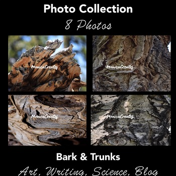 Stock Photos Collection - Bark and Trunks