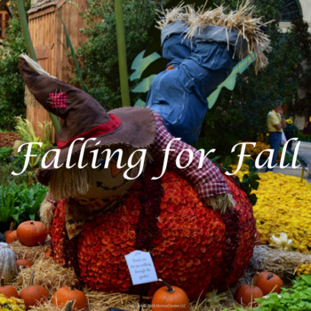 Stock Photos - Fall Decor and Decorations - 5 Photographs