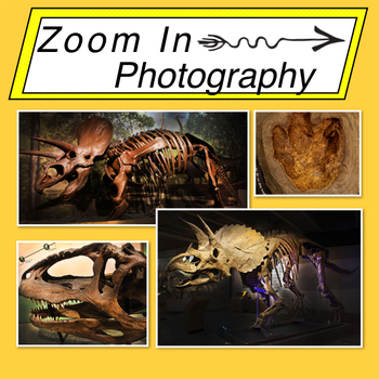 Stock Photos: Dinosaur Mini Bundle
