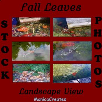 Stock Photos - Fall Leaves - 6 Photographs