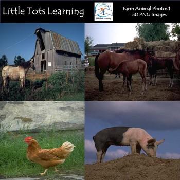 Farm Animal Photos - Pack 1 - Commercial Use