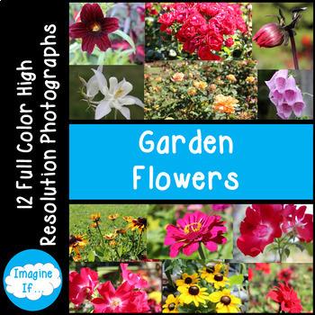 Stock Photos-Garden Flowers