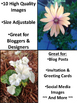 Stock Photos for Bloggers: Beautiful Blooms Set (Personal and Commercial Use)
