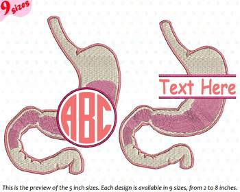 Stomach Circle Split Embroidery Design science school Anatomy frame frames 228b