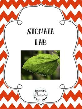 Stomata Lab