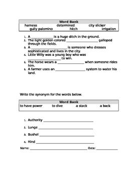 Stone Fox Vocabulary Test
