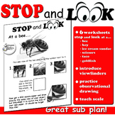 Stop and Look: An Introduction in Observational Drawing