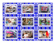 Stores & Shops Cards