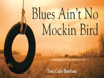 """Story Intro:  """"Blues Ain't No Mockingbird"""" PP ~ Notes on Dialect"""