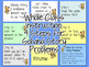 Word Problems Addition & Subtraction 2nd-3rd Editable PowerPoint Review Activity