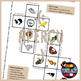 Story dice in French/FFL/FLS: Animaux de compagnie/Pets