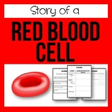 Story of a Red Blood Cell - A Circulatory System Project!
