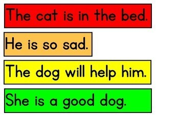Story the Room (Cat and Dog)