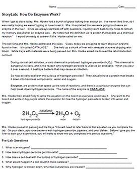 Storylab: How Do Enzymes Work? (KEY)