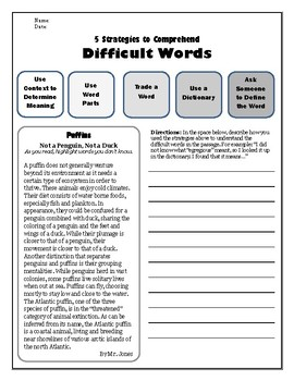 Strategies for Comprehending Vocab Reading Assessment 2 (Puffins)