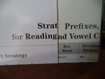 Strategy and Prefixes        POSTERS  (SET of 2)