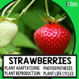 Strawberries Life Science Unit