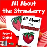 Strawberries Print and Digital | Emergent Reader and Decodable