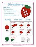 Strawberry - Brick Building Kit Instruction