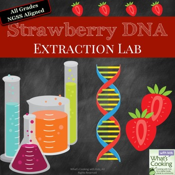 Strawberry DNA Extraction Lab by What's Cooking with Kids ...