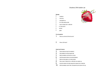 Strawberry DNA Extraction Lab (interactive science notebook edition)
