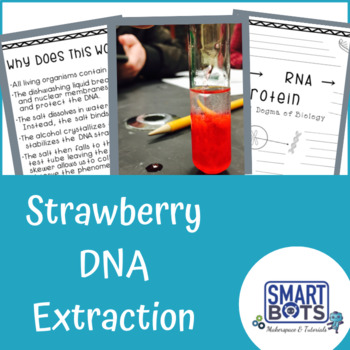 Strawberry DNA Extraction MiniLesson