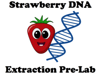 Strawberry DNA extraction Pre-Lab