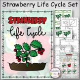 Strawberry Life Cycle Set