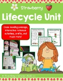 Strawberry Lifecycle Bundle