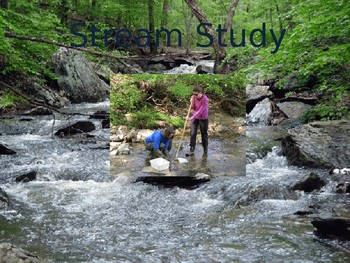 Stream Study Introduction- Response Sheet For Stream Study Included