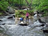Stream Study Introduction- Response Sheet For Stream Study