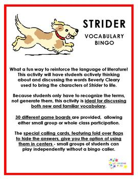 Strider Vocabulary Bingo