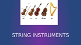String Instruments Orchestra Introduction Family