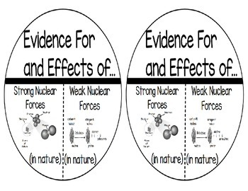 Strong and Weak Nuclear Forces in Nature