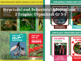 Structural Adaptations and Behavioral Adaptations: Graphic Organizers for Gr 3-5