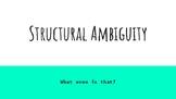 Structural Ambiguity visual presentation