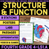 Structure & Function: How Organisms Live, Behave, Reproduce, Grow - Stations