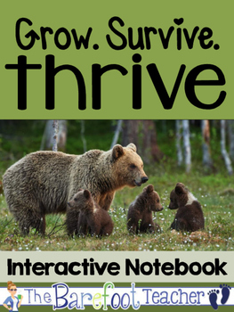 Structure, Function, & Information Processing Interactive Notebook