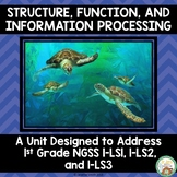 Structure, Function, and Information Processing 1st Grade NGSS