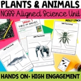 Structure, Function and Information Science Lessons for 1s