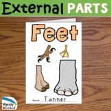 Feet Structures and Functions   Animal Body Parts