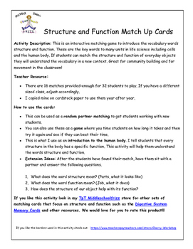 Structure and Function Match Up Game
