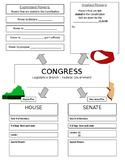 Structure of Congress - Graphic Organizer